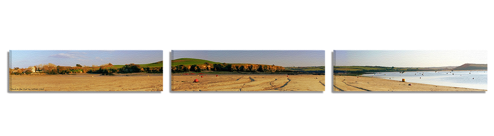 Stuck in the Mud (3 Part Panoramic)
