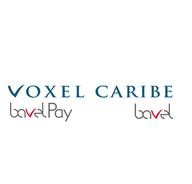 Voxel Caribe