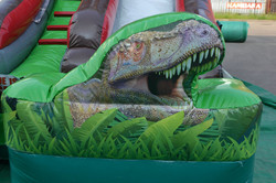 Dino Run Dry Slide (1).jpg