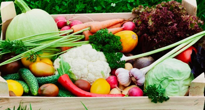 Vantagens e desvantagens dos alimentos orgânicos