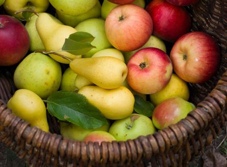 NutriAção: Conheça os benefícios e receitas da pera e maçã