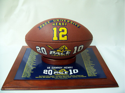 Premium Hand Painted Football and Display
