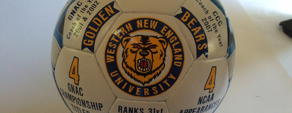 Custom Decorated Soccer Ball