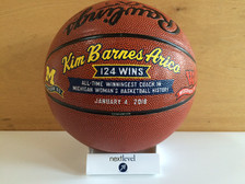 Premium Decorated Coach Ball