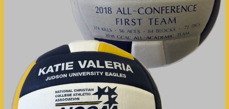 Decorated Volleyballs