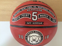 Custom 1000 point Basketballs