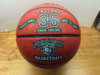 Custom Decorated 1000 point Basketballs