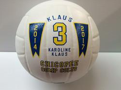 Custom Volleyball trophy award