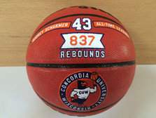 Hand Painted Basketball Awar