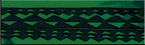 Bottom Green STEALING PICS CD At The Pia