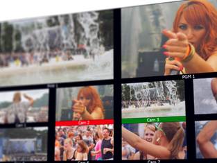 Customisable multiview