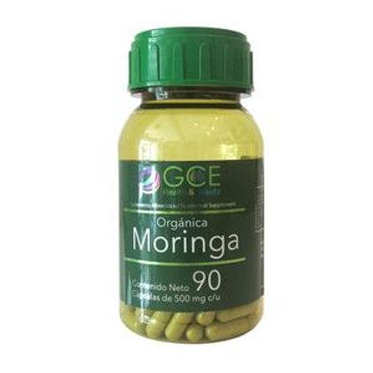 MORINGA ORGANICA 90 capsulas de 500 mg