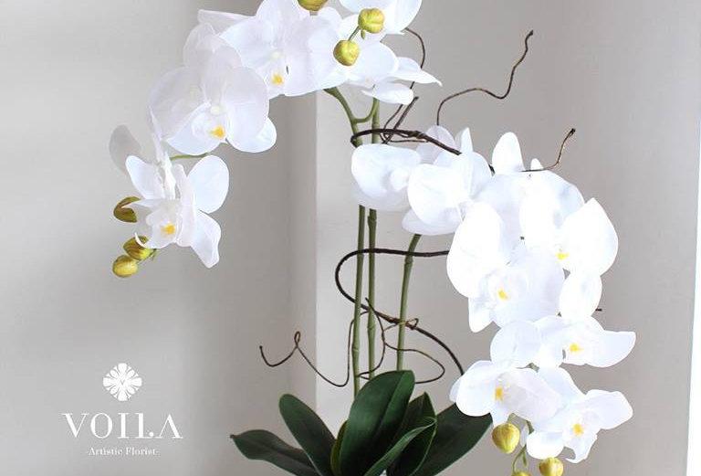 Orchid Vase Arrangement
