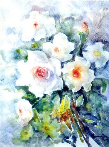 PUMA rose.jpg