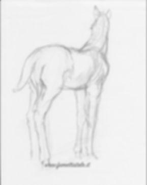 Fumetttistale'ssketch.jpg
