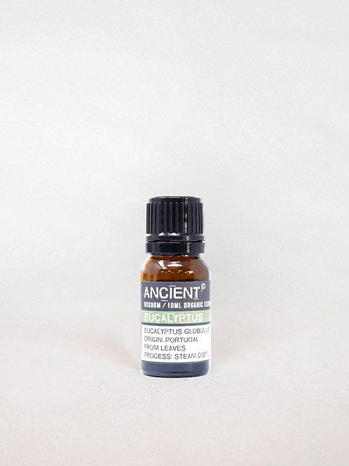 Aceite Esencial de Eucalipto (10ml)