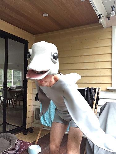 the super amazing dolphin show niow splashy puppet theatre