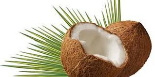 Shocking Reality of Pure Coconut Oil