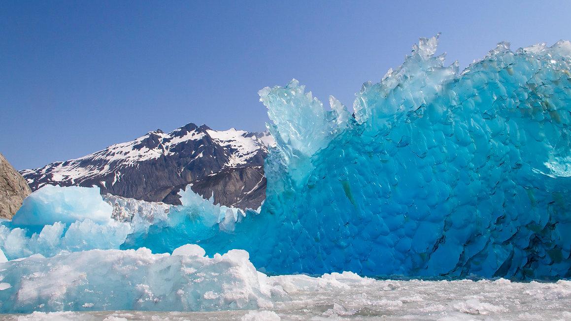 glacier bay photo tour