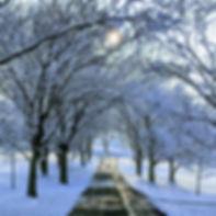 driveway winter.jpg