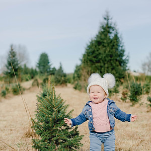 Christmas Tree Mini 2019