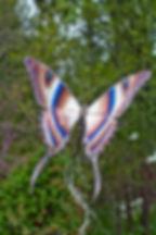 Butterflys-40.jpg