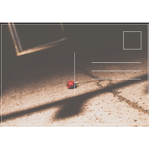 Midnight Red (43-1)