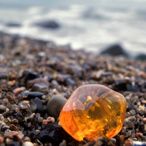 Stone of the Season: Amber
