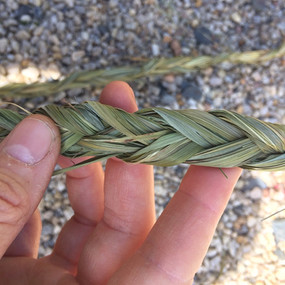 Mary's Grass