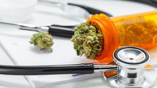 Marijuana and Drug Testing Update