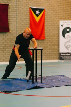 Demo Kung Fu (4)