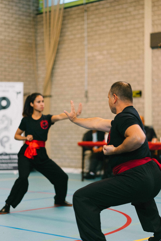 Demo Kung-Fu