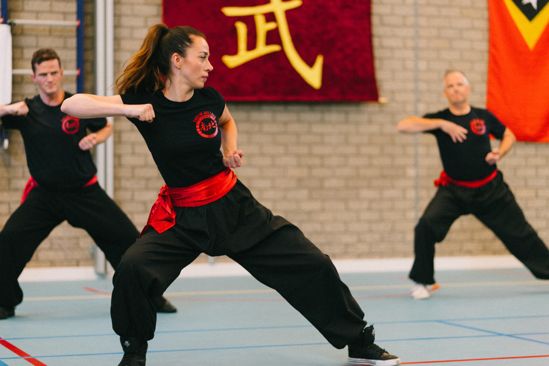 Demo Kung-Fu (3)