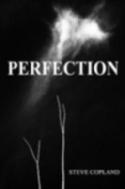 Perfection web.jpg