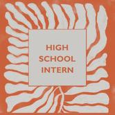 High School Intern.png