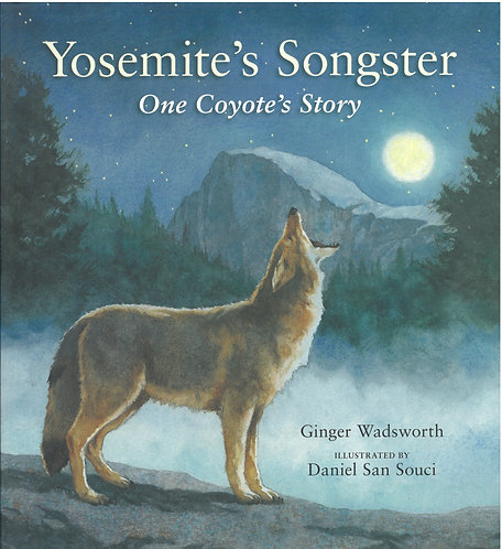 Yosemite's Songster - One Coyote's Story