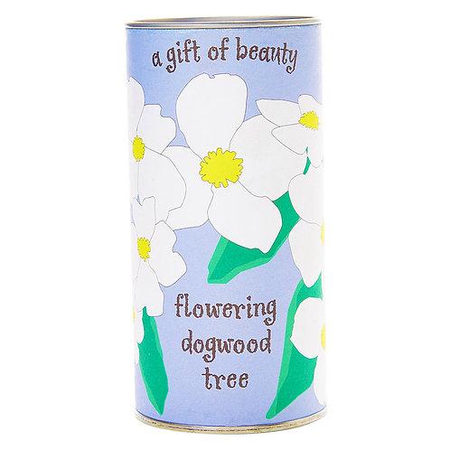 Flowering Dogwood Grow Kit