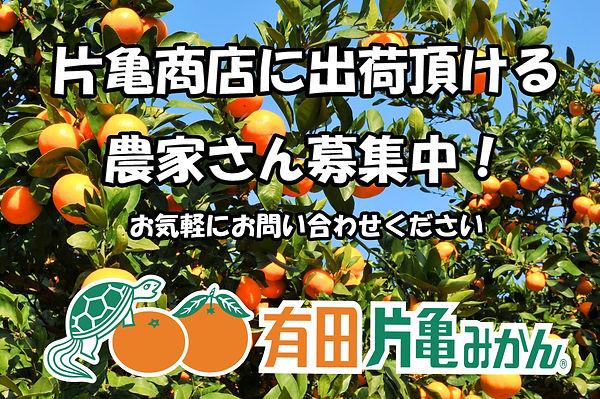 募集広告.jpg