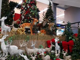 Campanha de Natal do Shopping João Pessoa leva clientes para o Caribe