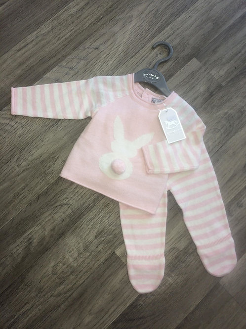 2Piece Pink Bunny outfit