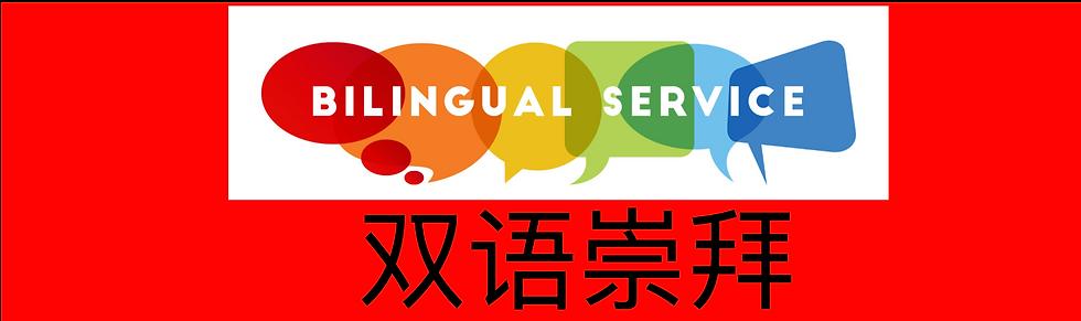 Bilingual%2520service_edited_edited.png