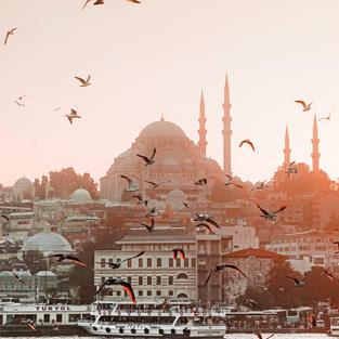Civitavecchia,Genoa,Kusadasi,Istanbul,Istanbul,Piraeus,Palermo,Civitavecchia (8novembre 11 notti) MSC POESIA