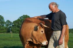 Roland Kleine en zijn koe