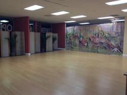 Beautiful New Studio