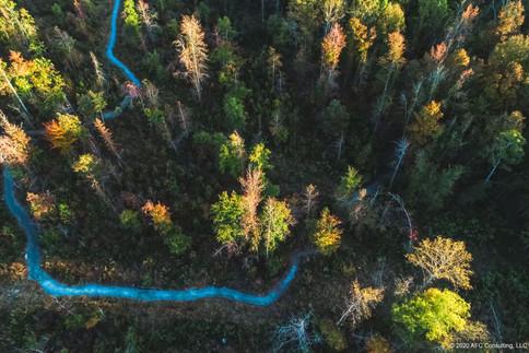 Cane Creek trail head