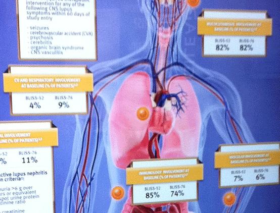 Digital_display_organs.png