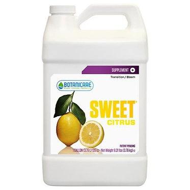 Sweet Citrus