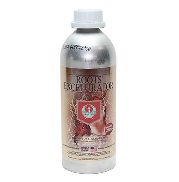 Roots Excelurator Silver