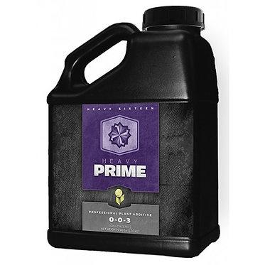 Heavy Prime