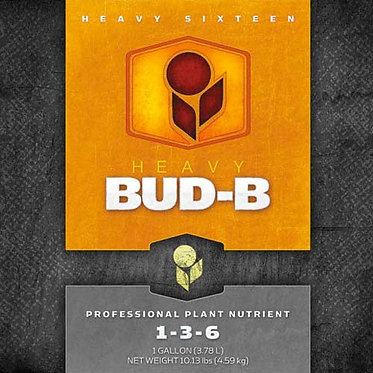 Heavy Bud-B
